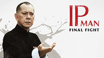 Ip Man: The Final Fight (2013)