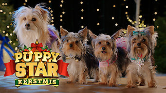 Puppy Star Kerstmis (2018)