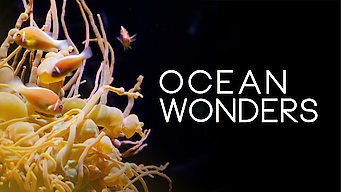 Ocean Wonders (2013)