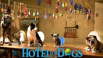 Honden Hotel (2009)