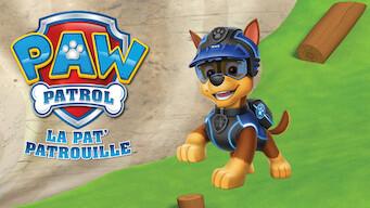 PAW Patrol : La Pat'Patrouille (2014)