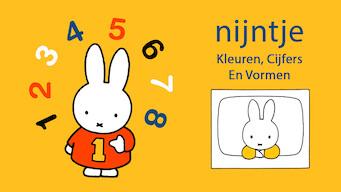 Nijntje: kleuren, cijfers en vormen (2004)