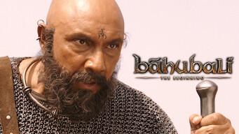 Baahubali: The Beginning (Hindi Version) (2015)