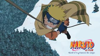 Naruto le film : Naruto et la princesse des neiges (2004)