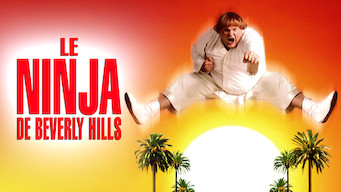 Le Ninja de Beverly Hills (1997)