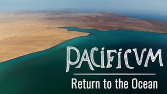 Pacificum: El retorno al océano (2017)