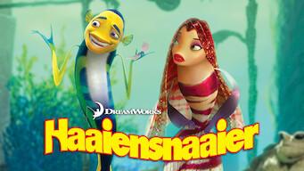 Haaiensnaaier (2004)