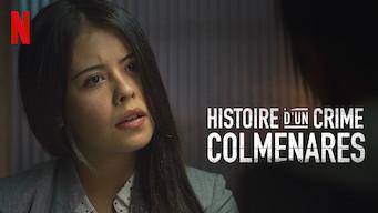 Histoire d'un crime : Colmenares (2019)
