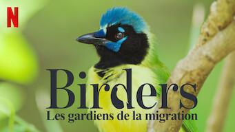 Birders : Les gardiens de la migration (2019)