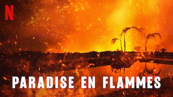 Paradise en flammes (2019)