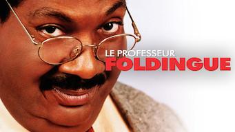 Le Professeur Foldingue (1996)