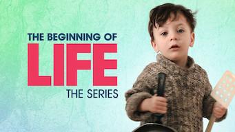 O Começo da Vida,  Série (2016)