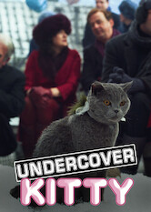 Search netflix Undercover Kitty